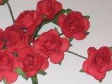 Ros 100 Röda rosor