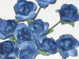 Ros 104 Blå rosor