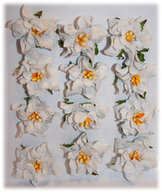 GAR006 Gardenia Grey