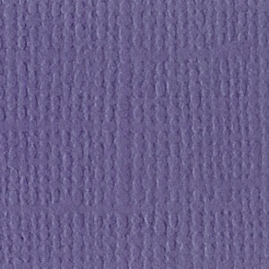 CC560 Purple Pizzazz